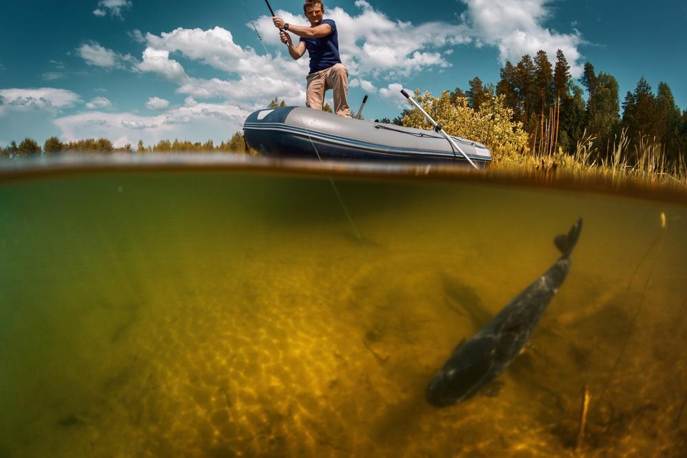 sonhar que vê um peixe grande
