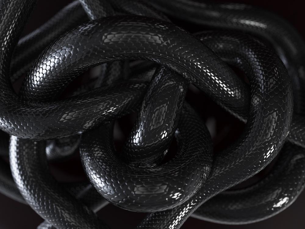 sonhar com muitas cobras pretas