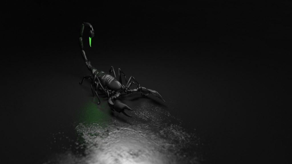 sonhar que vê um escorpião preto