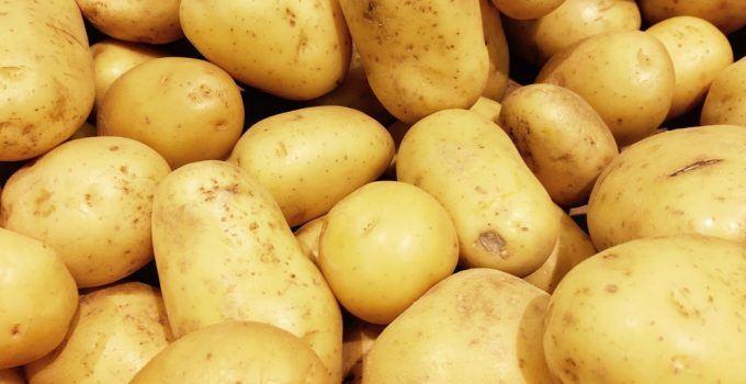 sonhar que vê uma batata