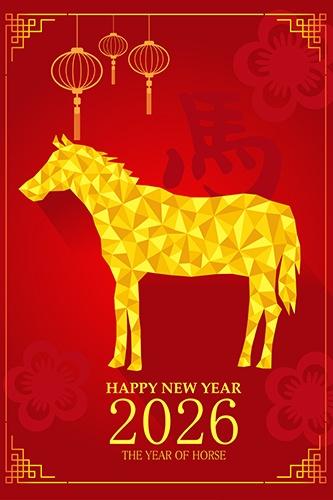 ano do cavalo