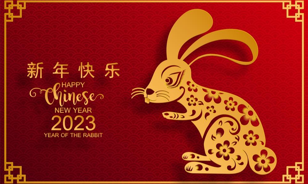 Resultado de imagem para ano do coelho chines