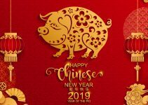 Porco no horóscopo chinês