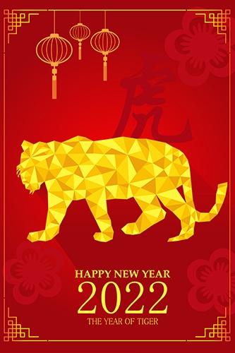 ano do tigre
