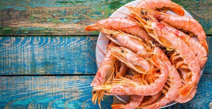 O que significa sonhar com camarão?