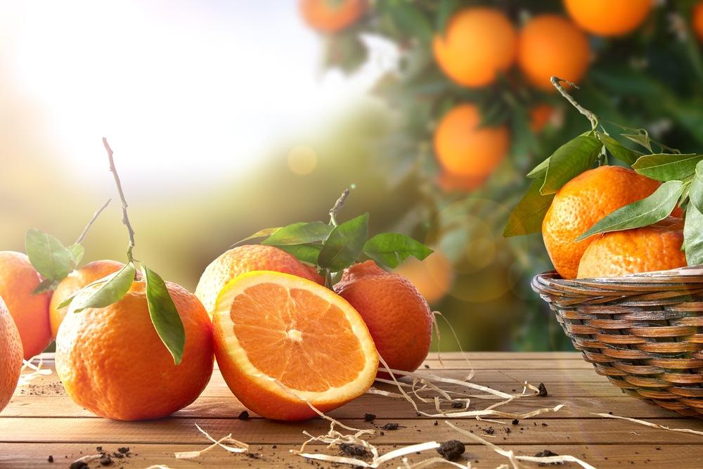 O que significa sonhar com laranja?