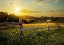 O que significa sonhar com fazenda?