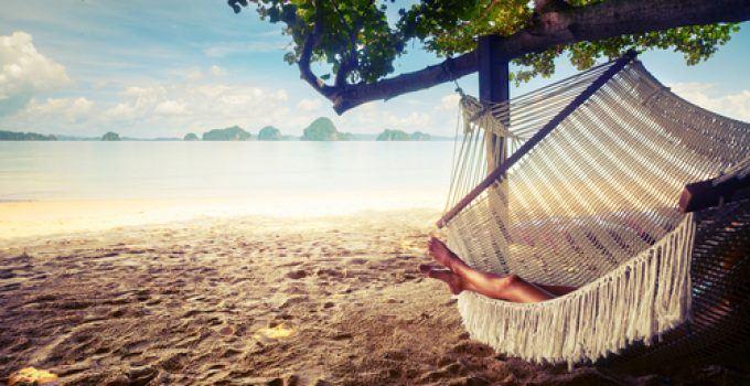 O que significa sonhar com rede?