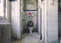 O que significa sonhar com fezes no vaso sanitário?